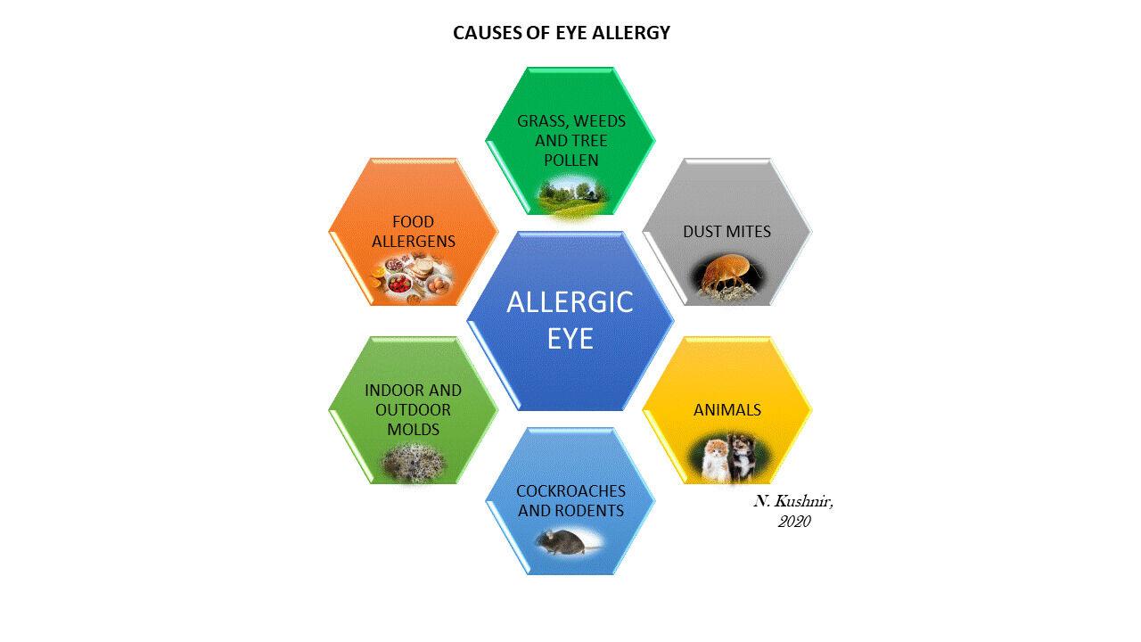 causes eye allergies