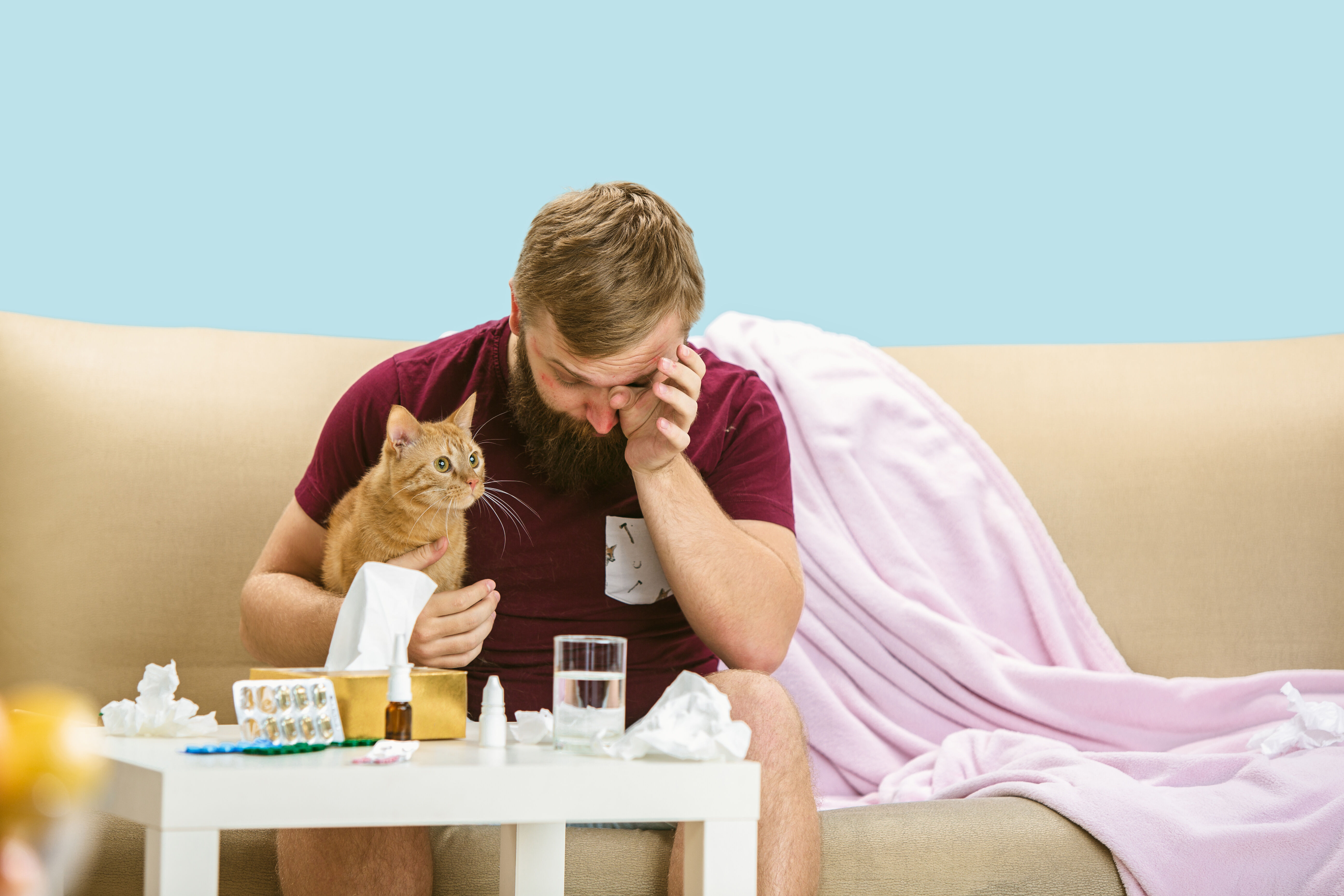 Allergic person with a cat and medications