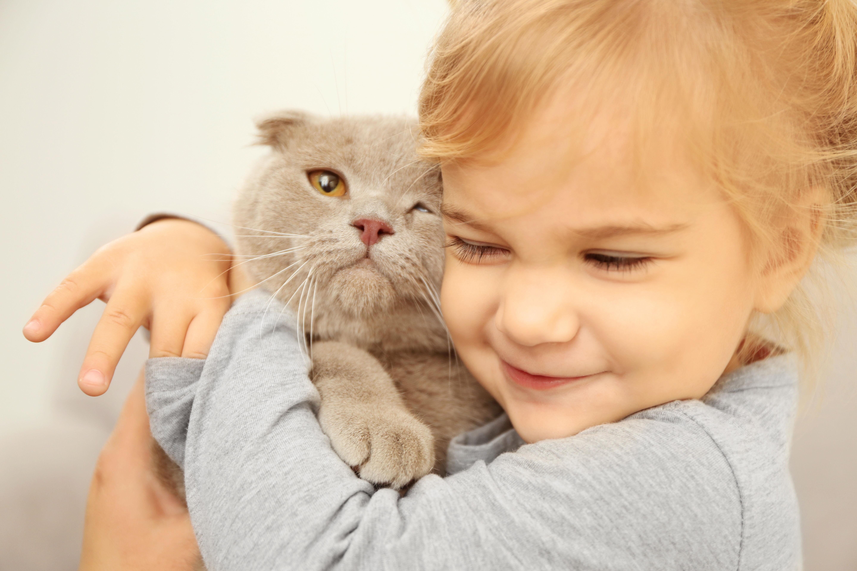 Kitten and girl